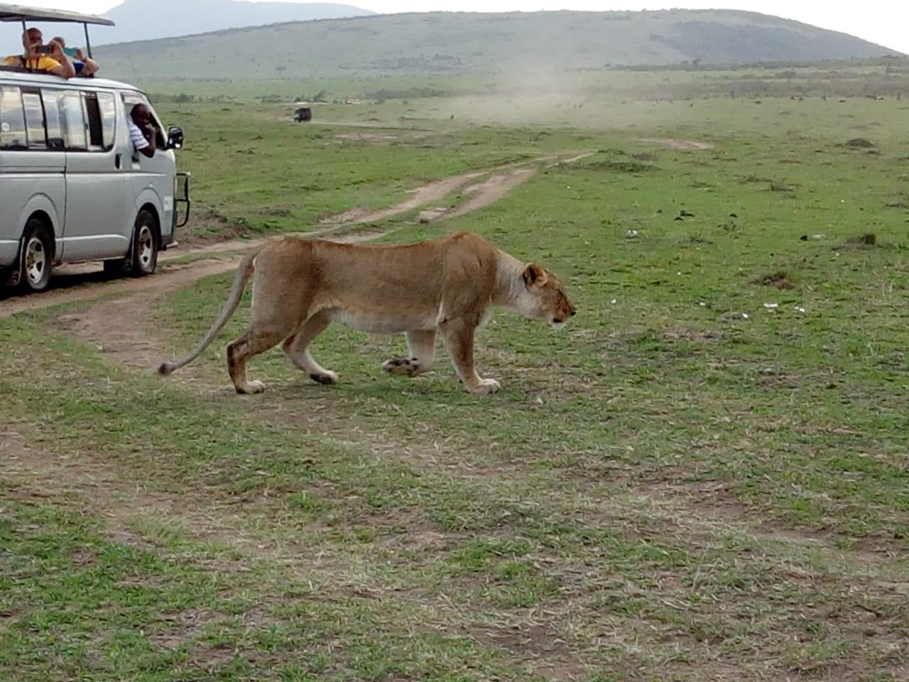 xmass day trips from nairobi