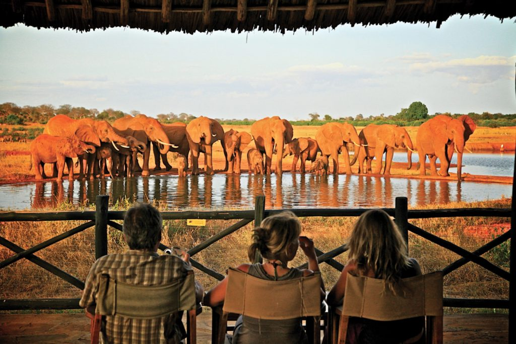 tsavo_east_1_day_trip